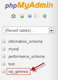 Select-Database-from-phpMyAdmin-2