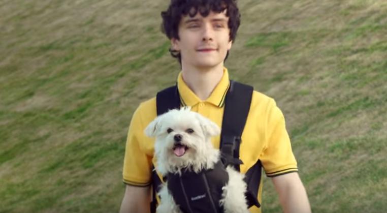 Canzone pubblicità Amazon Prime 2016 con cane e ragazzo bambino